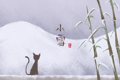 2020年小雪是几月几日几点几分 11月22日4点28分
