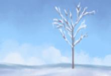 2021年冬天数九从哪天开始的 从冬至开始