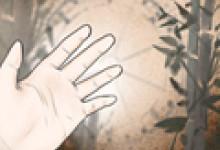 手型看富贵命 女人享福的手型