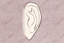 垂耳面相 耳垂上有窝相学