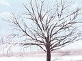 冬至快乐 祝福语 文案