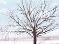 冬至温暖人心的祝福 发朋友圈的祝福语