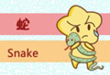 属蛇注定的姻缘 一生有几次婚姻