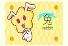 1999兔年命中有几次婚姻  属兔婚姻