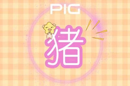 2011年1月的养猪生意怎么样?哪种运气最好