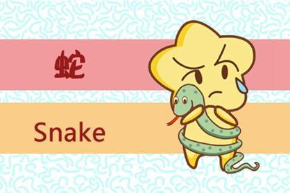 丑年十二生肖蛇的幸运色是什么?哪个是禁忌色