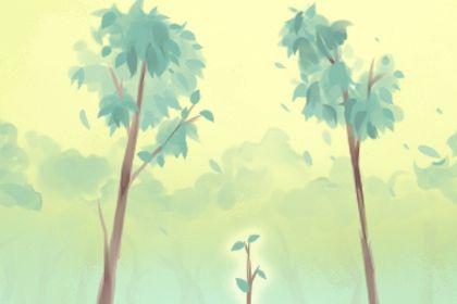 2021年3月12日植树节是什么日子 老黄历宜忌查询