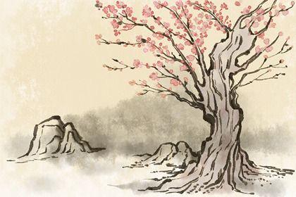 黄山桃树(无字)