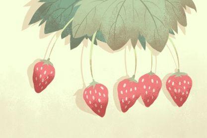 草莓(420x280)