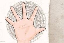 女人手掌纹路图解右手 手上三线