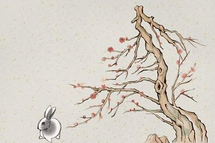 水墨生肖 2.0 兔1