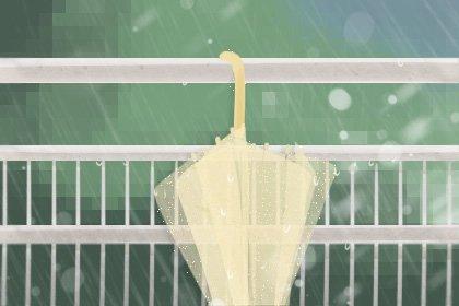 雨水-2无字