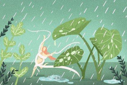 雨水1无字