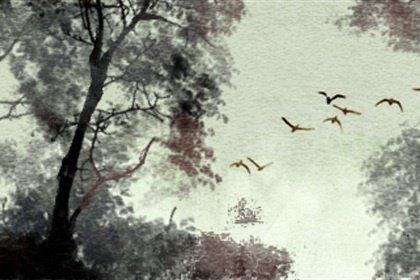 风景23 (3)