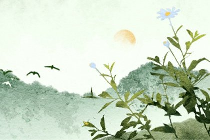 风景37 (3)