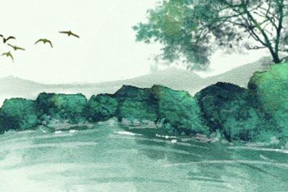 风景10 (2)