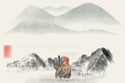 水墨生肖 2.0 鸡2