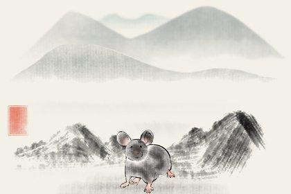 水墨生肖 2.0 鼠2