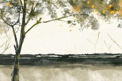 风景6 (2)