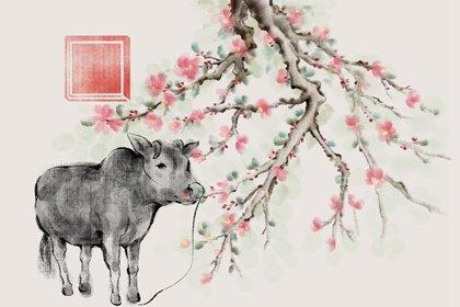 水墨国风 生肖1.0 牛2(无字)