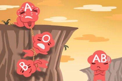 b型血与什么血型相配