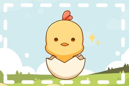 十二生肖鸡的来历与内涵 属鸡的故事和传说