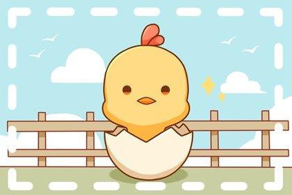 2005年出生17岁的属鸡男2022年上半年运势