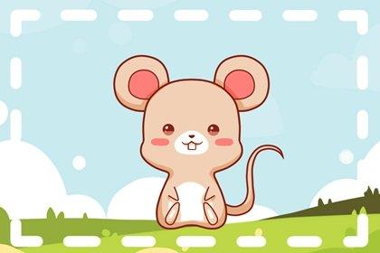 属鼠的2021年下半年犯桃花吗 正缘出现觅得真爱