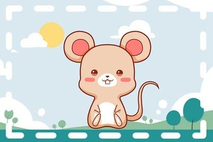2022年生肖属鼠的人感情婚姻运详解