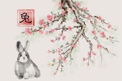 水墨国风 生肖1.0 兔3(有字)