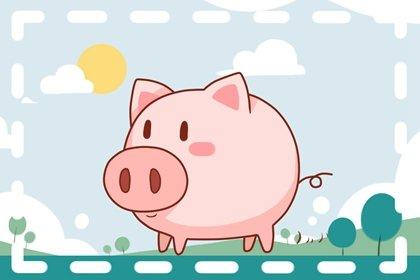2021年8月属猪的人桃花运势如何