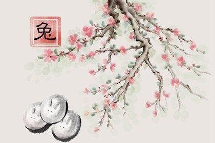 水墨国风 生肖1.0 兔1(有字)
