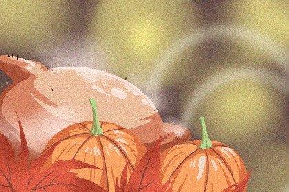 感恩节是几月几日 好吃又好玩的西洋节日