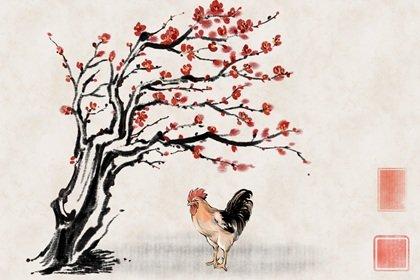 属相每月运程解析 属鸡的2022年12月运势走势分析