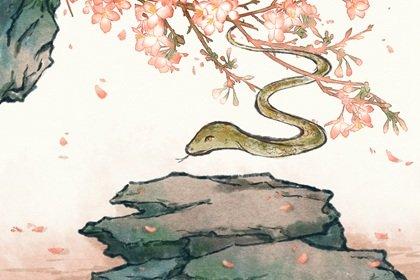 2022年生肖属蛇的人财运怎么样