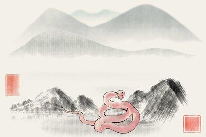 属蛇的戴黄金好不好 戴什么能转运