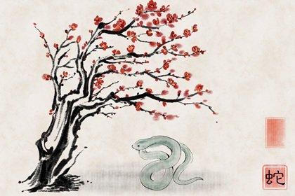 2021年下半年属蛇的人有烂桃花吗 吉星环绕坏运远离