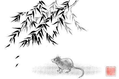 2008年14岁的属鼠的2022年健康运