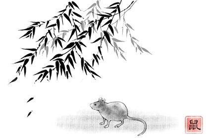 2020年2岁的属鼠的2022年健康运好吗
