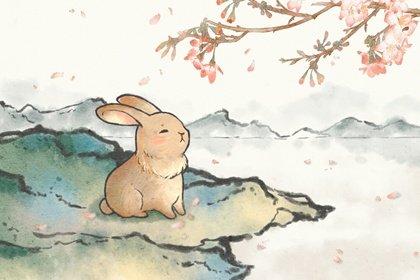 澳门金沙入口兔的来历与内涵 属兔的故事和传说