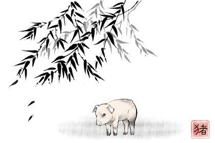 属鼠与属猪的在事业上合作好不好