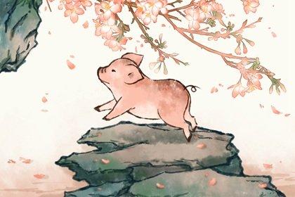 第一运程 2021年属猪10月运程解析