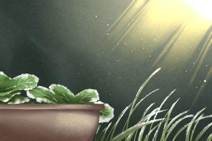 霜降的特点和风俗 不同地方有趣的霜降风俗