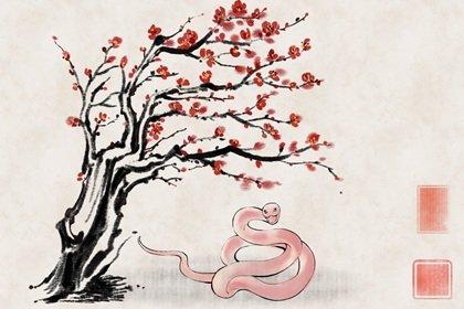 水墨国风 生肖1.0 蛇1(无字)