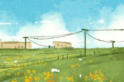 风景12 (2)