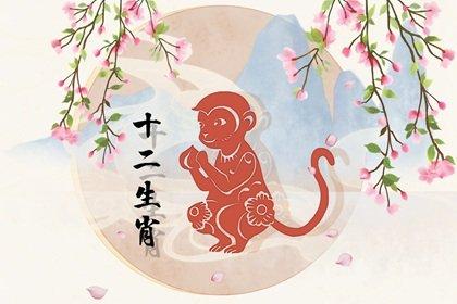 2004年出生属猴的2022年健康运