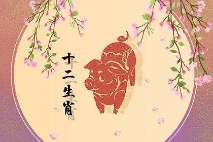 1995年出生27岁属猪人2022年财运如何 贵人来助力