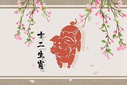 属猪的2021年8月爱情运势如何