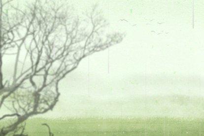 谷雨2 无字