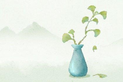 花瓶 (2)